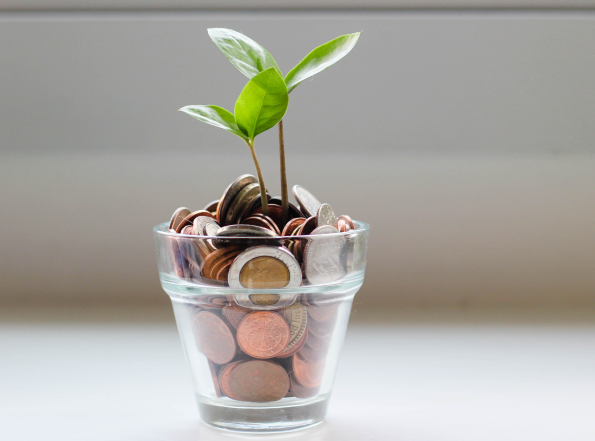Plant growing out of a cup of coins